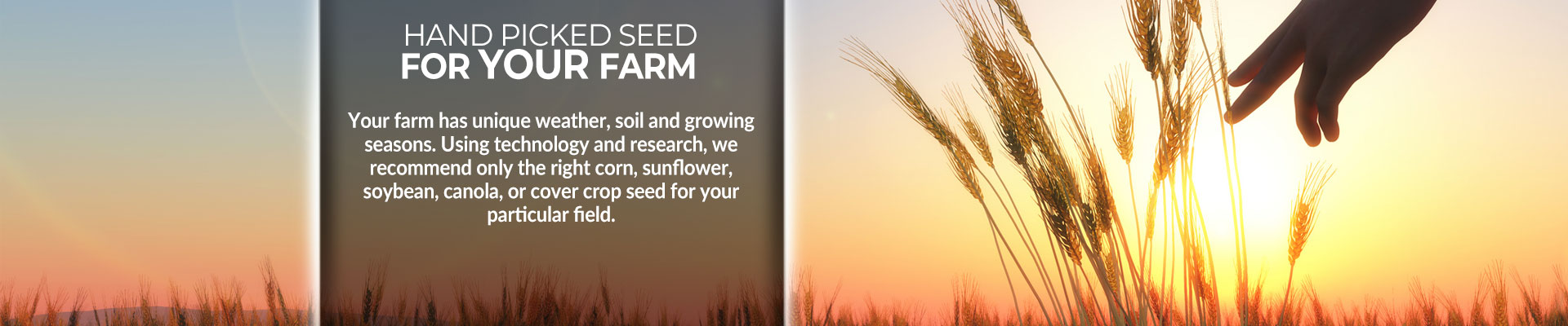 Hand picked seed for your farm